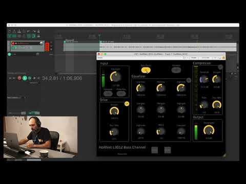 HoRNet L3012 Bass Channel overview