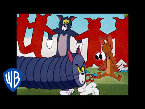 Tom & Jerry | The Different Shapes of Tom | Classic Cartoon Compilation | WB Kids