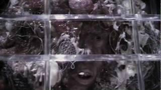 Doctor Who: Revelation of the Daleks (Creepy fan trailer)