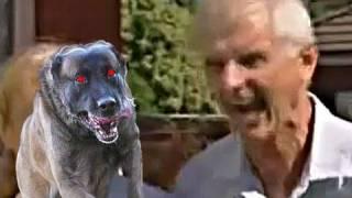 Crazy Barking Man REMIX