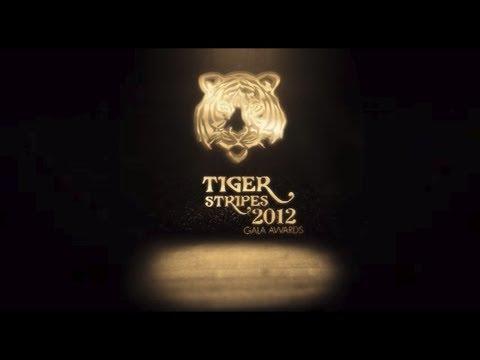 Tiger Brands - Tiger Stripes Gala Awards