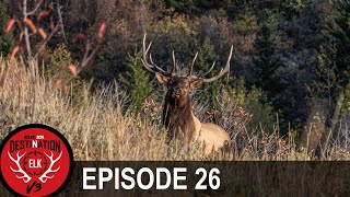 Shane's Elk Hunt of a Lifetime (Destination Elk V3 - Episode 26)