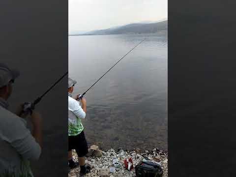 Montana Trout Lake Georgetown.