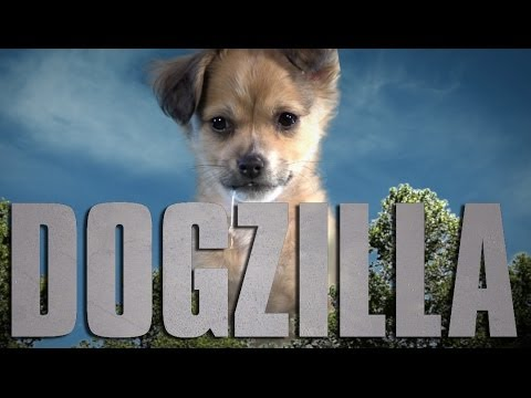 Godzilla (Cute Puppy Version)