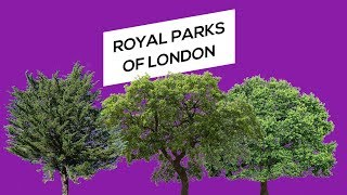 Royal Parks of London (History of green spaces of London)
