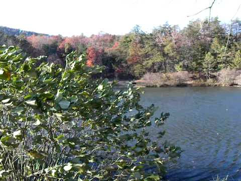 Pond in Autumn at Bear Wallow Springs