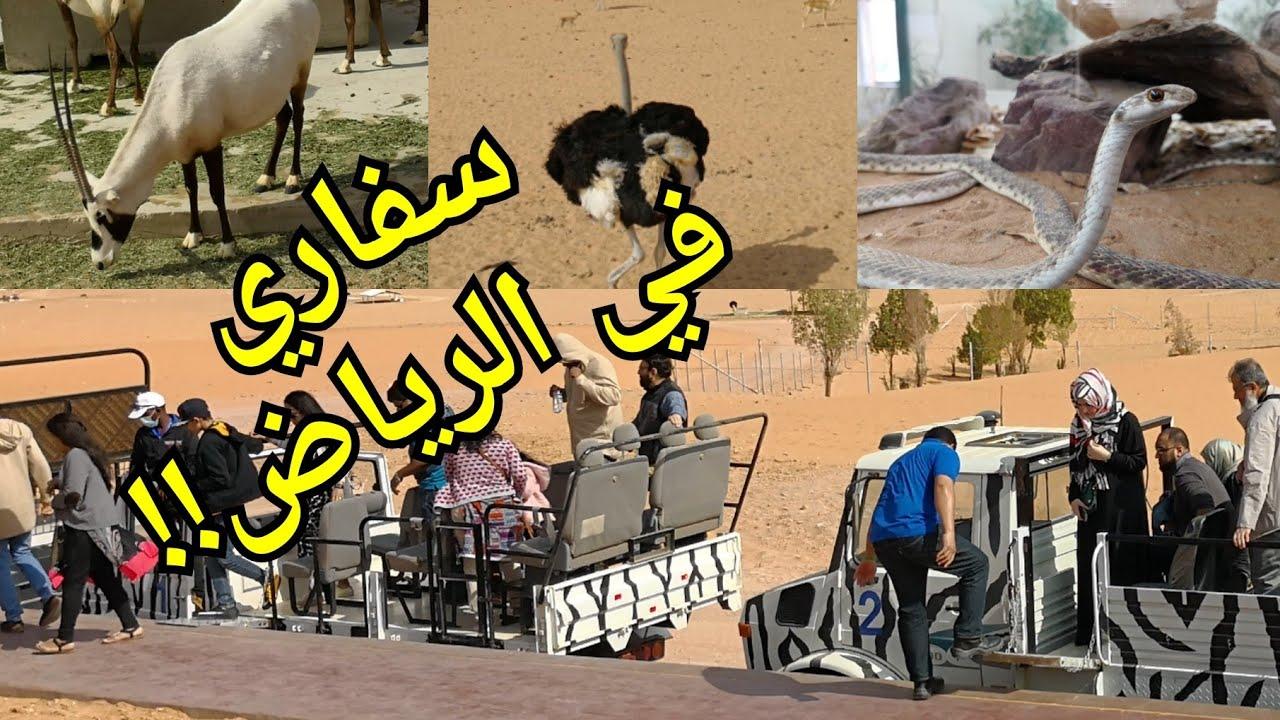 Abdulaziz A Twitter زيارتي لمنتجع 11