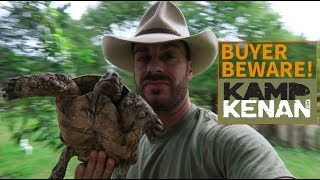 Strategy for buying a Tortoise