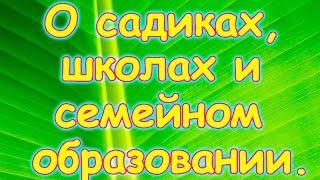 Семья Бровченко. Наши мысли по поводу школ, садиков и семейного образования. (05.16г.)