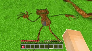 WAS IST IN DER CARTOON CAT GRUBE IN MINECRAFT