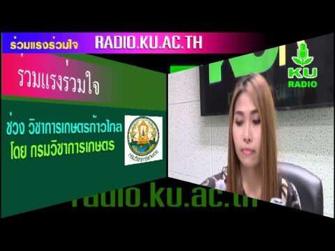 รายการร่วมแรงร่วมใจ วันที่ 25 กุมภาพันธ์ 2559 สถานีวิทยุ ม.ก.