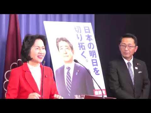 【新ポスター発表記者会見】松島みどり広報本部長(2019.2.5)