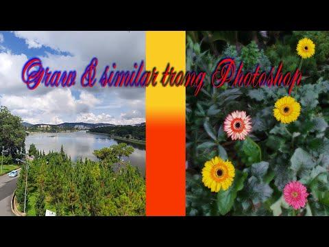 Cách chọn vùng rất hay của lệnh Grow và Similar trong Photoshop. @Thịnh 68tran