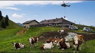 [Vaud] Sécheresse: le ravitaillement en eau des chalets d'alpage vaudois a débuté