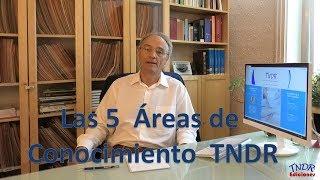 ¿Cuáles son las 5 áreas de conocimiento TNDR?