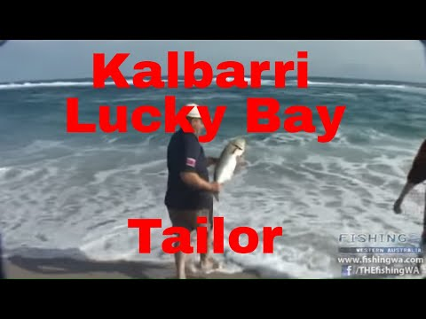 Best Of Fishing WA Episode 16 Preview - Lucky Bay Tailor