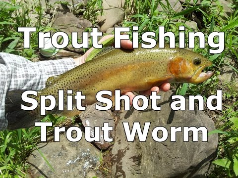 Basic Fishing Rig For Trout -  Split Shot And A Worm