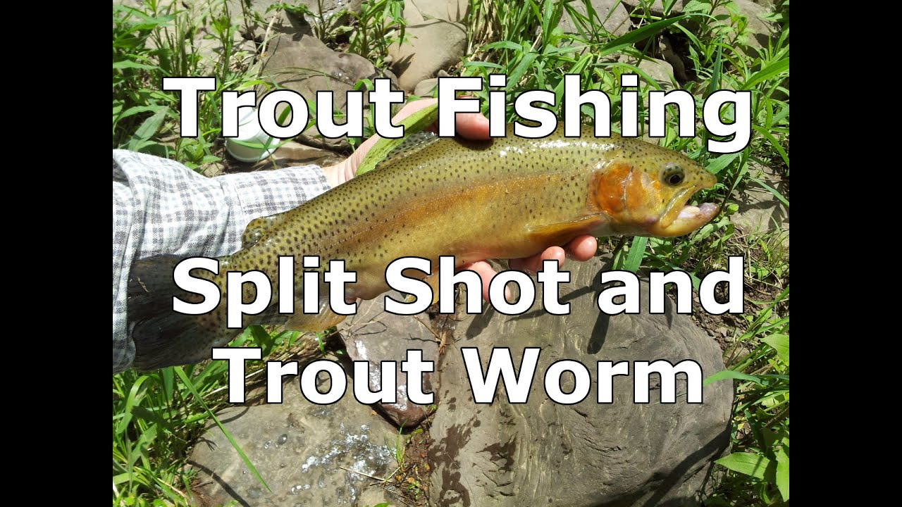 Basic fishing rig for trout split shot and a worm youtube for Split shot fishing