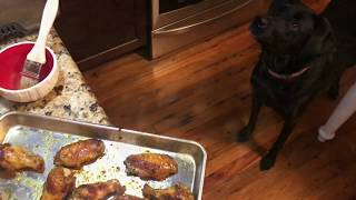 Keto Chicken Wings In Instant Pot Recipe and Breville Smart Oven