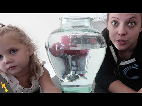 Will It Float? Therapy With Alice