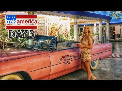 ROUTE 66 & LAS VEGAS VLOG 2018 // ROOM TOUR TREK AMERICA WESTERN WONDER - PARTY BUS TRAVEL!