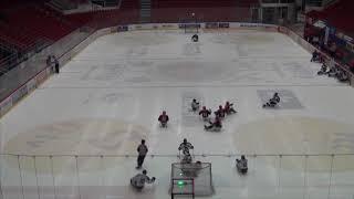 HC Sparta Praha sledge hokej vs České Budejice