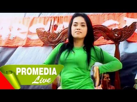 Jaipongan Tonggeret - Darsita Group (10-8-2014)