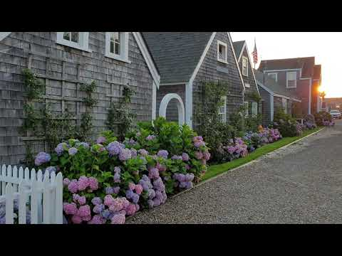 My Morning Routine on Nantucket Island