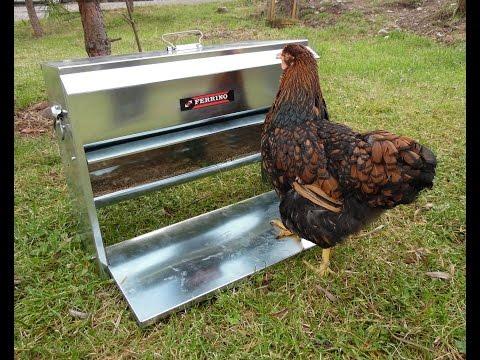 Otomatik Tavuk Yemliği