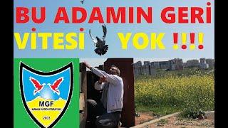 Gambar cover Bu Adamın Geri Vitesi Yok. Bayram Oguz Abi, Marmara Güvercin Fedarasyonuna Kuş Uçurdu. 05354914285