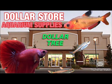 10 Aquarium Supplies To Buy From The Dollar Store