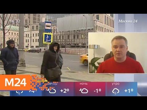 Сильный ветер ожидается в Москве вечером 9 марта - Москва 24