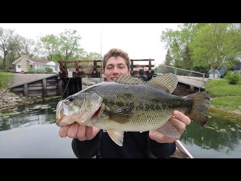 Spring Topwater Frog Fishing  -- Ft. Apbassin (...again)