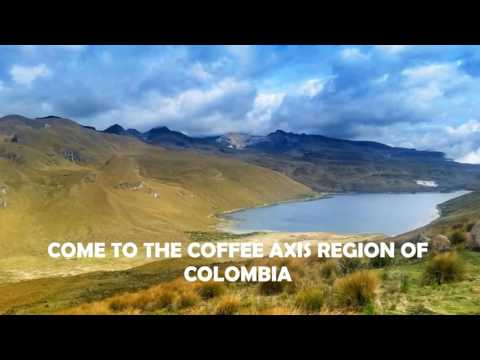 COLOMBIA COFFEE AXIS REGION THE ONLY RISK IS WANTING TO STAY