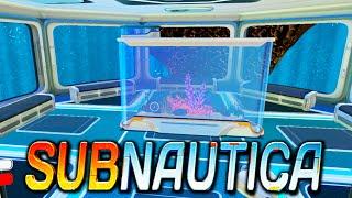 Subnautica | HUGE ROOMS, AQUARIUM, BENCH | Update / Gameplay 1080p HD