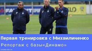 Первая тренировка «Динамо» под руководством Михайличенко