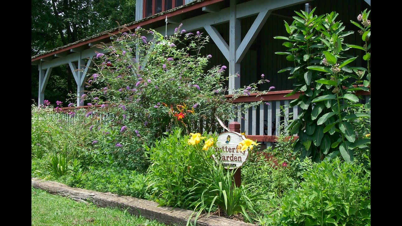 Butterfly Garden I Butterfly Garden Plans - YouTube