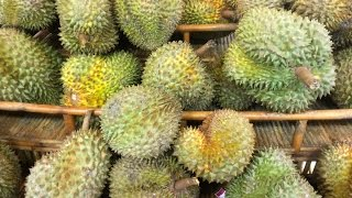 Amazing Fruits Ever Available In Cambodia - Various Fruits In Cambodia