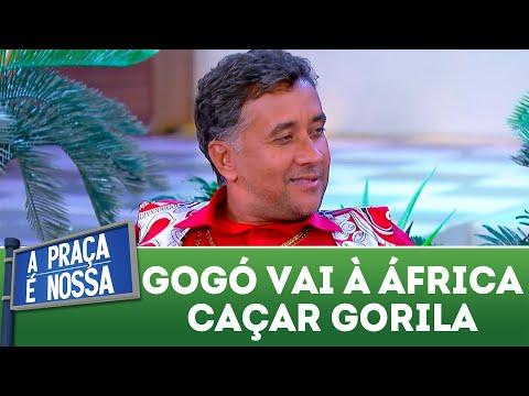 Gogó vai à África caçar gorila | A Praça é Nossa (31/05/18)