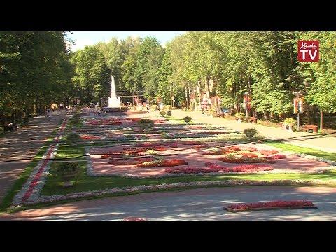 В парке Толстого появились новые развлечения