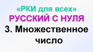 3-урок. Множественное число в русском языке примеры и упражнения. Русский как иностранный. РКИ