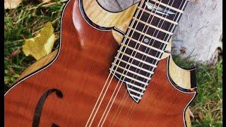 """Chris Cerna plays the """"Junkyard Dog"""" Sorensen Sprite Two-Point mandolin"""