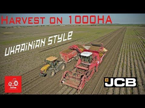 Ukraine: Potato Harvest