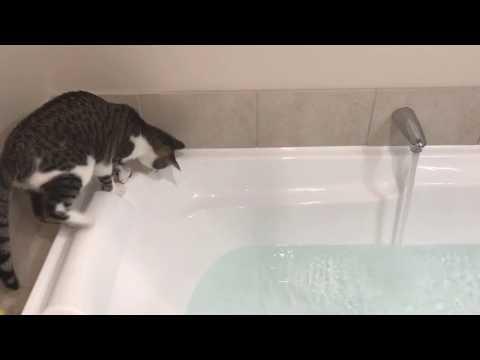 No eyes Murdock takes a bath... accidentally