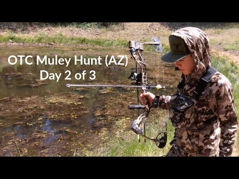 Mule Deer Hunting Arizona's OTC Tag (Day 2)