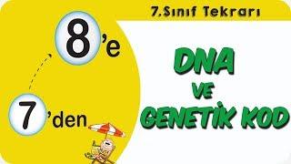 DNA ve Genetik Kod  739;den 839;e Hazırlık Kampı