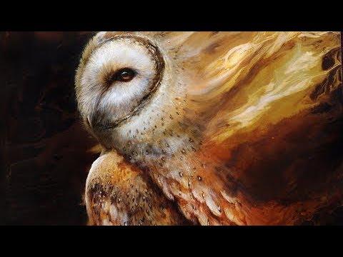 Barn Owl | OIL PAINTING | Timelapse Video