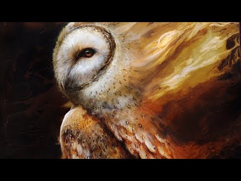 Barn Owl | OIL PAINTING | Timelapse Video