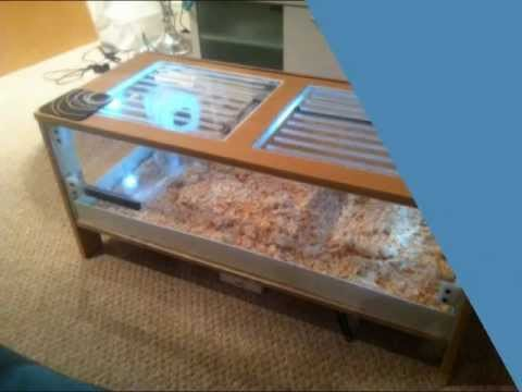 Amazing Hamster Cage Tour Diy Youtube