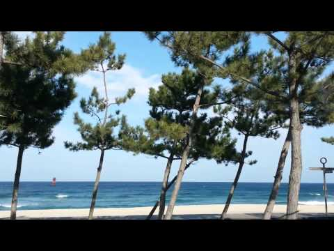 The Sound Of Silence - Angel D, XOXO Feat. Ala Berht